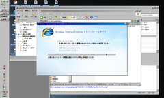 IE8inst.PNG